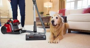 cleaning pet hair